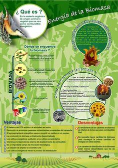 Roller sobre la Biomasa