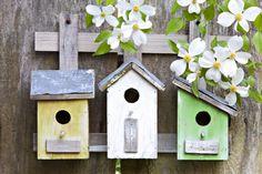 DIY: het ideale vogelhuisje in je tuin