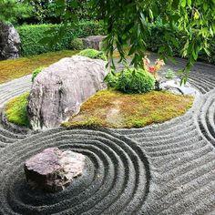 -in garden of shade? Japanese Rock Garden, Zen Rock Garden, Zen Garden Design, Japanese Gardens, Feng Shui Landscape, Japan Landscape, Landscape Design, Feng Shui Plants, Japan Garden