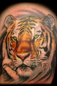 c71475638 Animal tattoos by Portland tattoo artist Joshua Hibbard as featured on  Spike TV's Ink Master. Check out his online gallery and contact him here  for tattoo ...