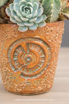 Stunning pottery by Susan Aach and succulents arranged by The Succulent Perch