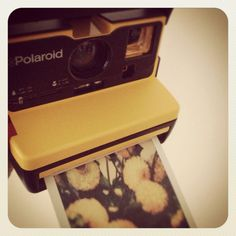 I want a Polaroid camera so bad :(
