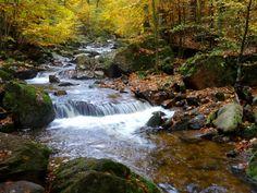 brockenwanderung Trekking, Planets, Waterfall, Germany, Wanderlust, Hiking, Europe, Heinrich Heine, Travel
