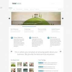 Trim Responsive WordPress Theme | Best WordPress Themes Download 2013
