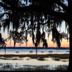 Beaufort, South Carolina: #52 on @nytimestravel's list of 52 places to go in 2016. #Beaufort is a peaceful Low Country town with a stylish new inn. Photo of the historic Waterfront Park that overlooks the Beaufort River.