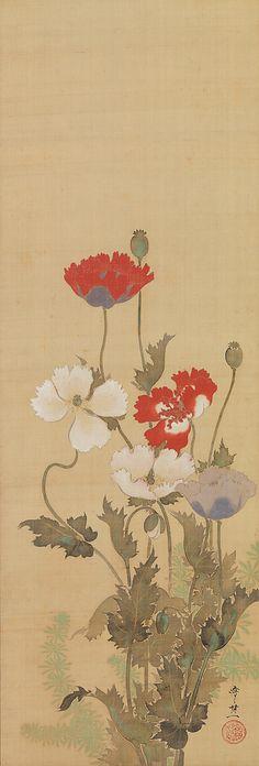 `Poppies` Suzuki Kiitsu (1796–1858)