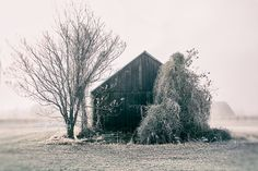 Rustic Barn Series Walla Walla Pacific by MScottPhotography
