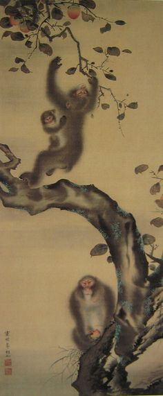 "Mori Sosen, ""Monkeys in a Persimmon Tree"" Japanese Painting, Chinese Painting, Japanese Prints, Japanese Art, Animal Paintings, Animal Drawings, Primates, Japanese Monkey, Asian Art Museum"