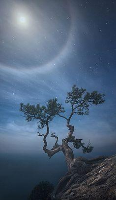 Photographer\'s photo Ilya Melikhov - Ночь на пике Космоса. Лунное гало.