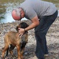 #dogalize Un uomo adotta 45 cani e crea un giardino per loro #dogs #cats #pets