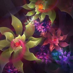 FRACTAL FLOWERS........PARTAGE OF CONSCIOUSNESS AND THE ABSOLUTE.....ON FACEBOOK.......