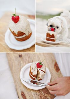 These tiny, dog friendly cakes are adorable!