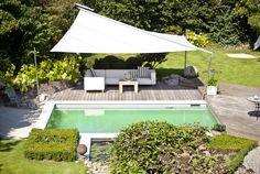 Mit Seerosen ist der Bio-Filter dieses Living-Pools bepflanzt - ein Hingucker!