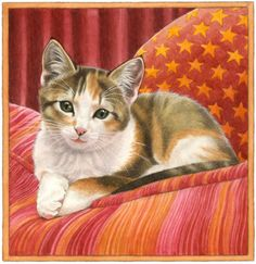 P Francien van Westering Pretty Cats, Beautiful Cats, I Love Cats, Cool Cats, Gato Calico, Cat Site, Cat Character, Cat Posters, Cat Cards