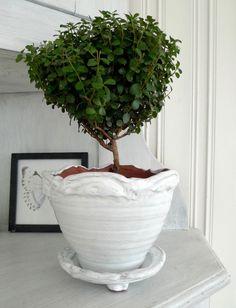 Shop and discover emerging brands from around the world Handmade Pottery, Planter Pots, Nova, Shopping, Handmade Ceramic