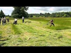 They Both Cut The Grass, But Watch The Guy On The Right. Unbelievable! - LittleThings.com - Amazing Videos, Stories and News from around the world. It's the little things in life that matter the most! - LittleThings.com