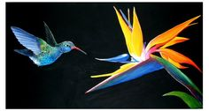 Two of my Favorite things! Hummingbird with bird of paradise flower-acrylic on canvas