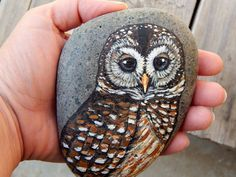 BARRED OWL Hand Painted Stones Rock Art by LotusandNightshade