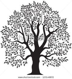Line Drawing Oak Tree Oak tree vector illustration