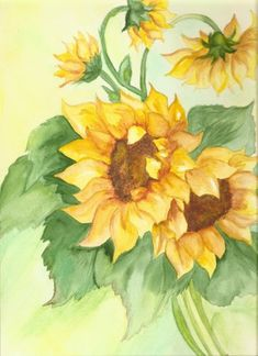 watercolor sunflowers | Some of my artwork | Pinterest ...