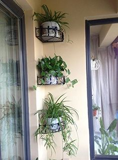 Flower Pot Stand Corner Holder Shelf Iron Wall Spider Plant Vase Hooks Style Home Decoration Garden DIY Scindapsus Rack Black Small Balcony Design, Small Balcony Garden, Small Balcony Decor, Backyard Garden Landscape, Balcony Plants, House Plants Decor, Plant Decor, Apartment Balcony Garden, Apartment Balcony Decorating