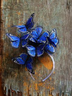 Royal Blue Monarch Butterfly Fascinator Headpiece by DelfinaCrowns