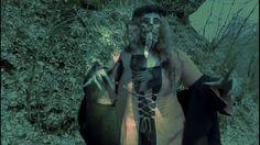 Veltist - Přízračné krásky   (Bestiář 1.díl)