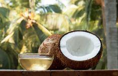 Coconut Oil For Dogs, Coconut Oil Pulling, Coconut Oil Uses, Benefits Of Coconut Oil, Coconut Oil For Skin, Organic Coconut Oil, Coconut Sugar, Coconut Oil Hair Treatment, Grow Hair