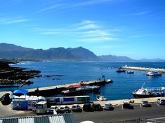 Hermanus - New Harbour Beach Villa, Whale Watching, Cape Town, South Africa, Coast, World, Places, Nature, Life