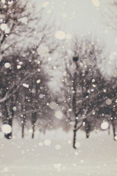 ivvvoo:  Snow flurries