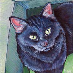 Black cat in box  Custom Pet Portrait Painting in Acrylic