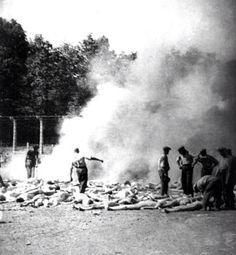 Auschwitz birkenau sonderkommando illegal taken picture,aug 1944