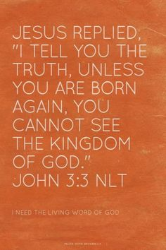 """Jesus replied, """"I tell you the truth, unless you are born again, you cannot see the Kingdom of God."""" Amen! www.reachavillage.org"""