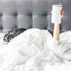 Tag a friend you want to stay in bed and drink coffee with for a chance to win a free We're picking two winners on # by coffeenclothes Coffee In Bed, Rise N Grind, Please And Thank You, Stay In Bed, But First Coffee, Spring Break, Sweet Home, Comfy, Photo And Video