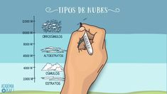 Tipos de nubes Science Videos, Youtube, Picasso, Montessori, Kinds Of Clouds, Cloud, Planters, Documentaries, Learning