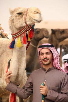 伝統の「美ラクダ」コンテスト、クウェート 写真8枚 国際ニュース : AFPBB News