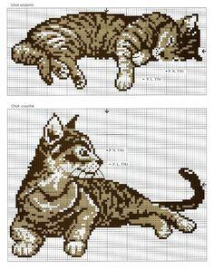 Cats perler bead pattern: