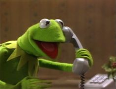 Sapo Kermit, Reaction Pictures, Funny Pictures, Digital Art Software, Sapo Meme, Frog Meme, What Is Anime, The Muppet Show, Hilarious Pictures
