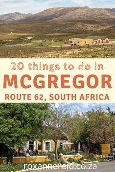 20 things to do in McGregor in Robertson valley - Roxanne Reid Stuff To Do, Things To Do, Diving Course, Victoria Falls, Kruger National Park, Koh Tao, Padi Diving, Scuba Diving, African Safari
