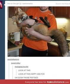 Happy fox!! OMG I think I literally teared up because I love this so much