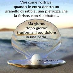 Da Angelo Custode fb