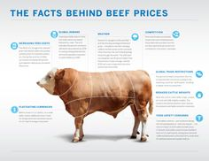 Learn what affects the price of beef, especially for 2013.