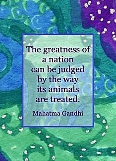 The greatness of a nation can be judged . . . Mahatma Ghandi