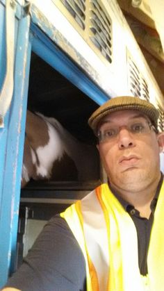 Me shipping horses to our clients in Los Angeles USA. Departed from Amsterdam