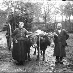 #geneatheme : mes ancêtres paysans. Mais qu'est-ce que ça veut dire ? À lire sur le blog www.murmuresdancetres.blogspot.fr  #genealogie © JB Boudeau