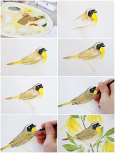 Pin By Sharah Djuhardi On Painting Project In 2020 Bird Drawings