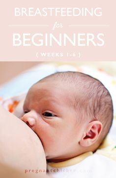 Breastfeeding for Beginners (weeks 1-6) — Pregnant Chicken