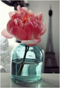 Friday Florals – The Peony | la salle design blog