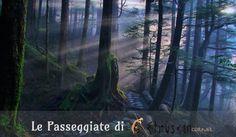 Passeggiate alla Riscoperta del Sacro. Etruscan Corner