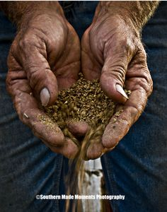 Hands that feed the world _farming